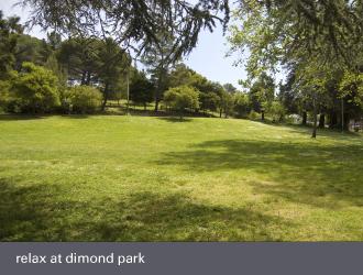 dimond laurel district oakland - dimond park lawn
