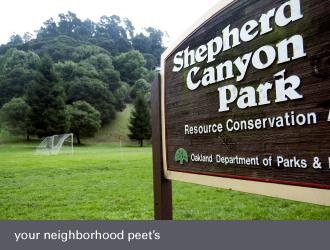 montclair oakland - shepherd canyon park
