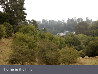 montclair oakland homes - in the hills