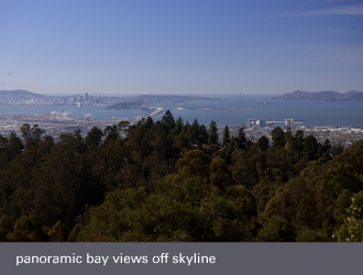 montclair oakland homes - bay view off skyline